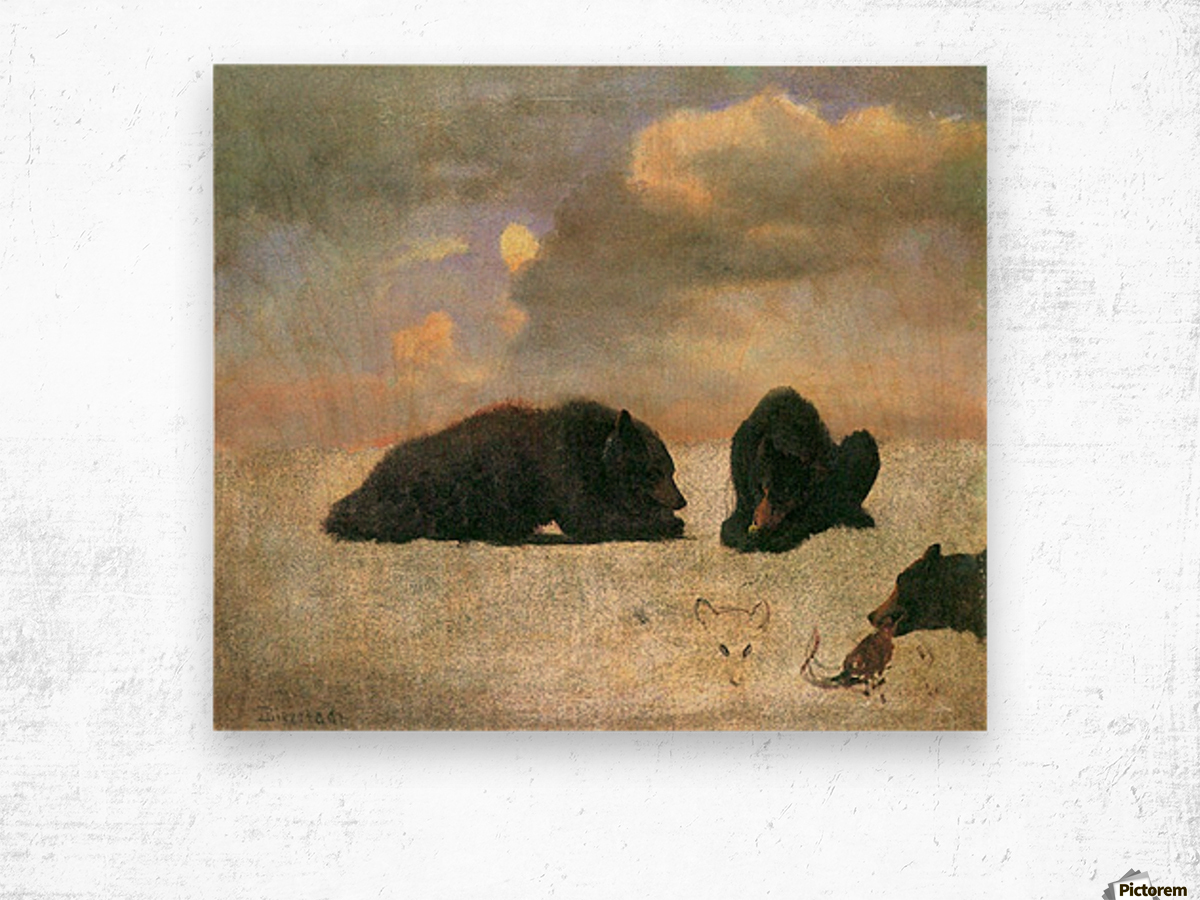 Grizzly Bears by Bierstadt Wood print