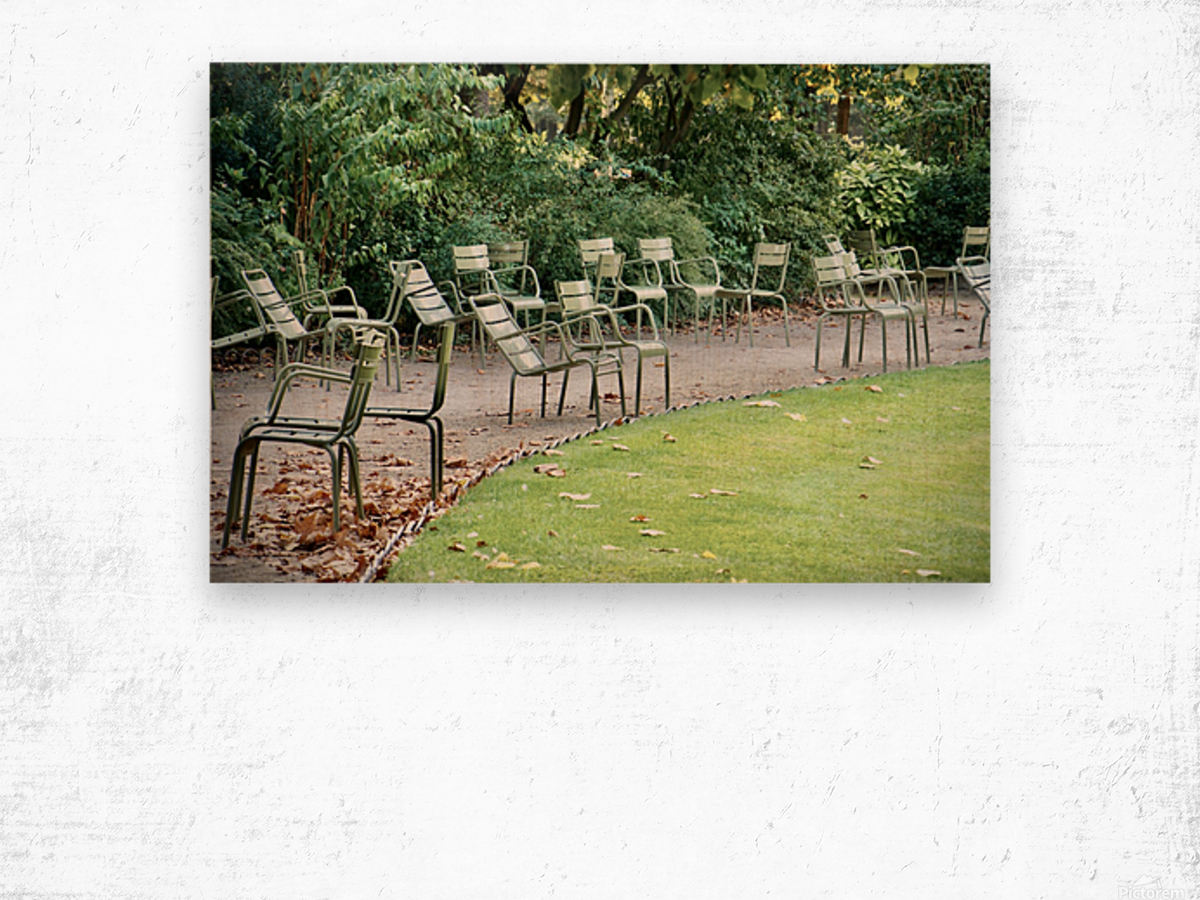 Chaises du Luxembourg   6 Wood print