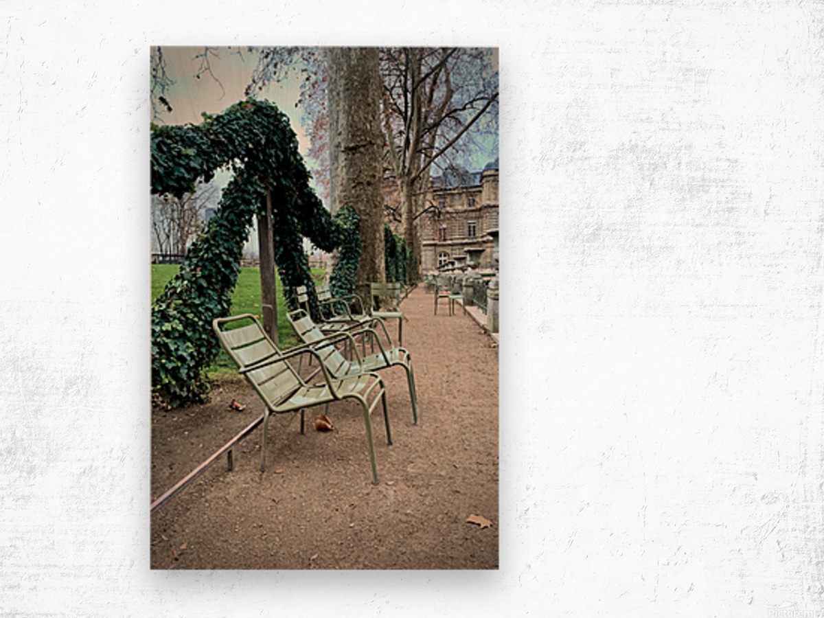 Chaises du Luxembourg   7 Wood print