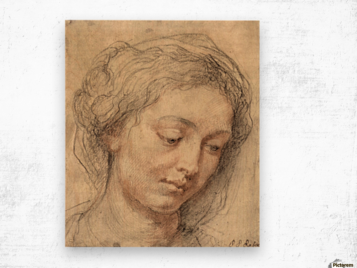 Head of a woman -2- by Rubens Wood print