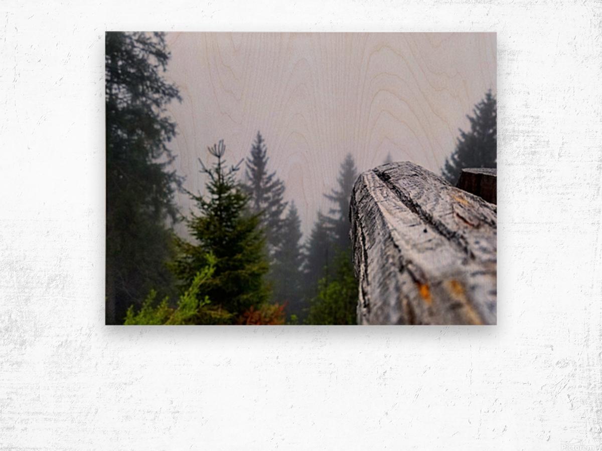 Mt Rigi Wood print