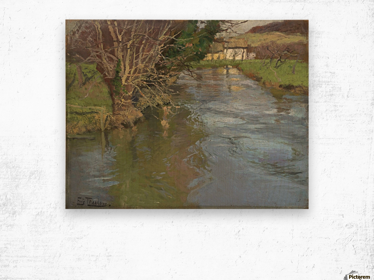 A stream in spring Wood print