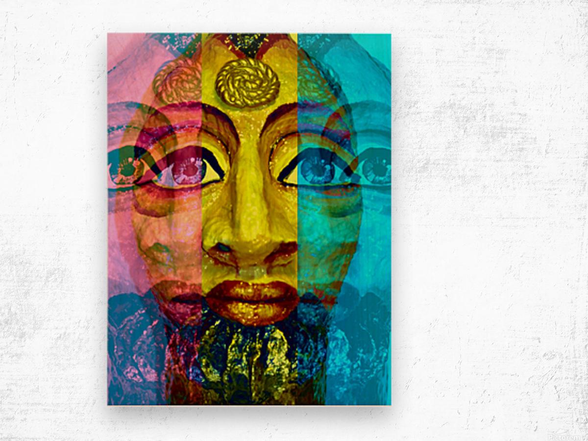 Ancient Egyptian Goddess  Wood print