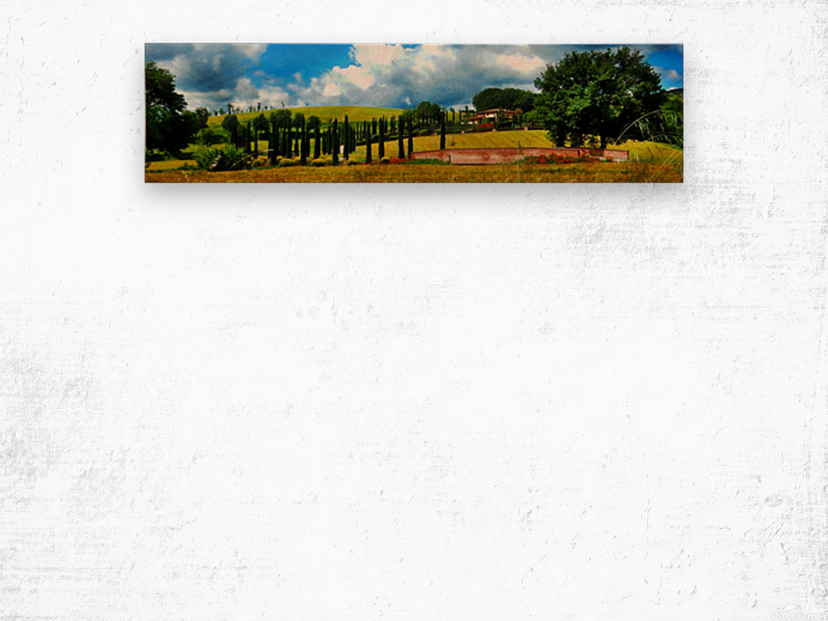 Cypress View Umbria Wood print