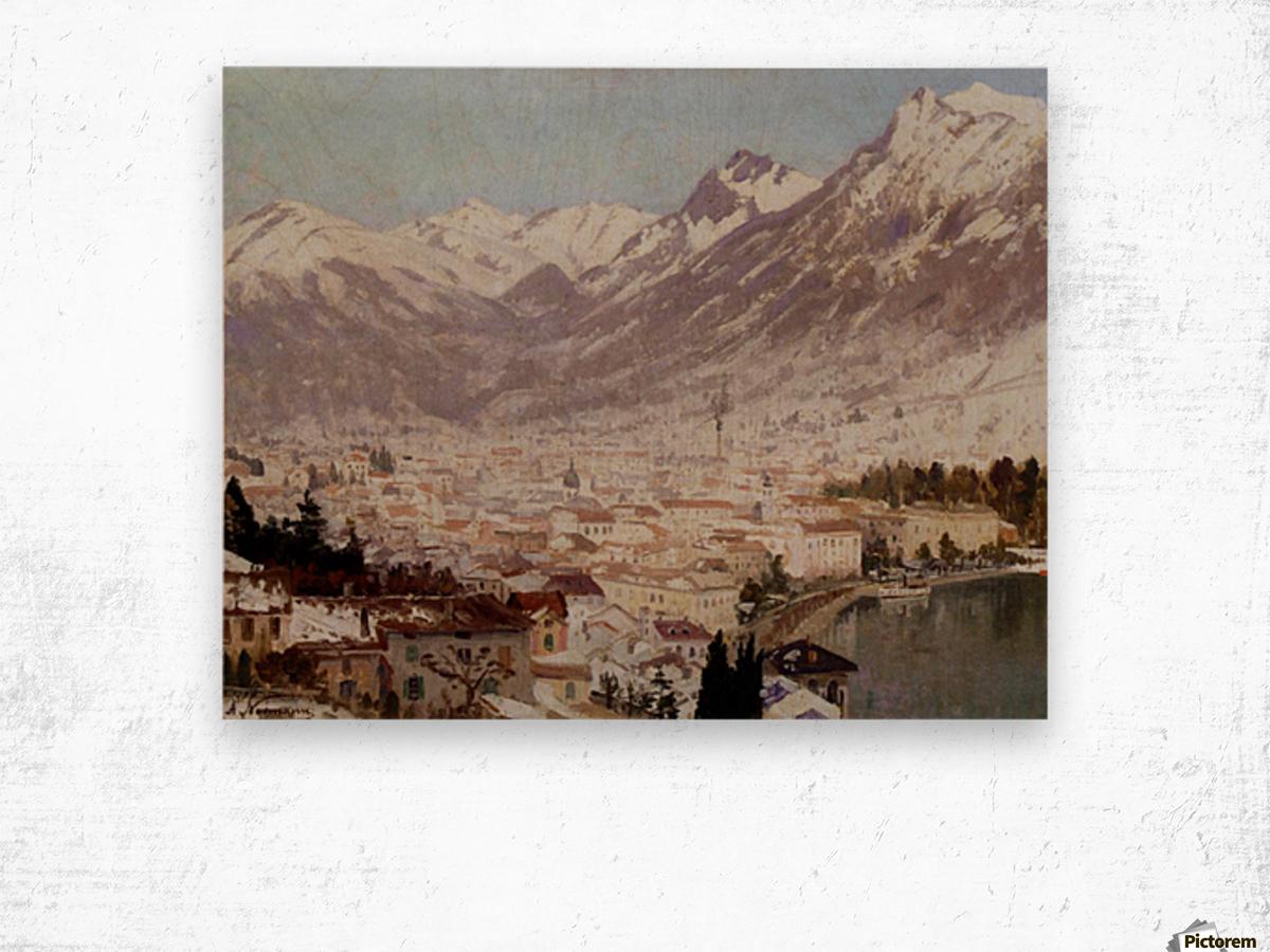 A view of Como Wood print
