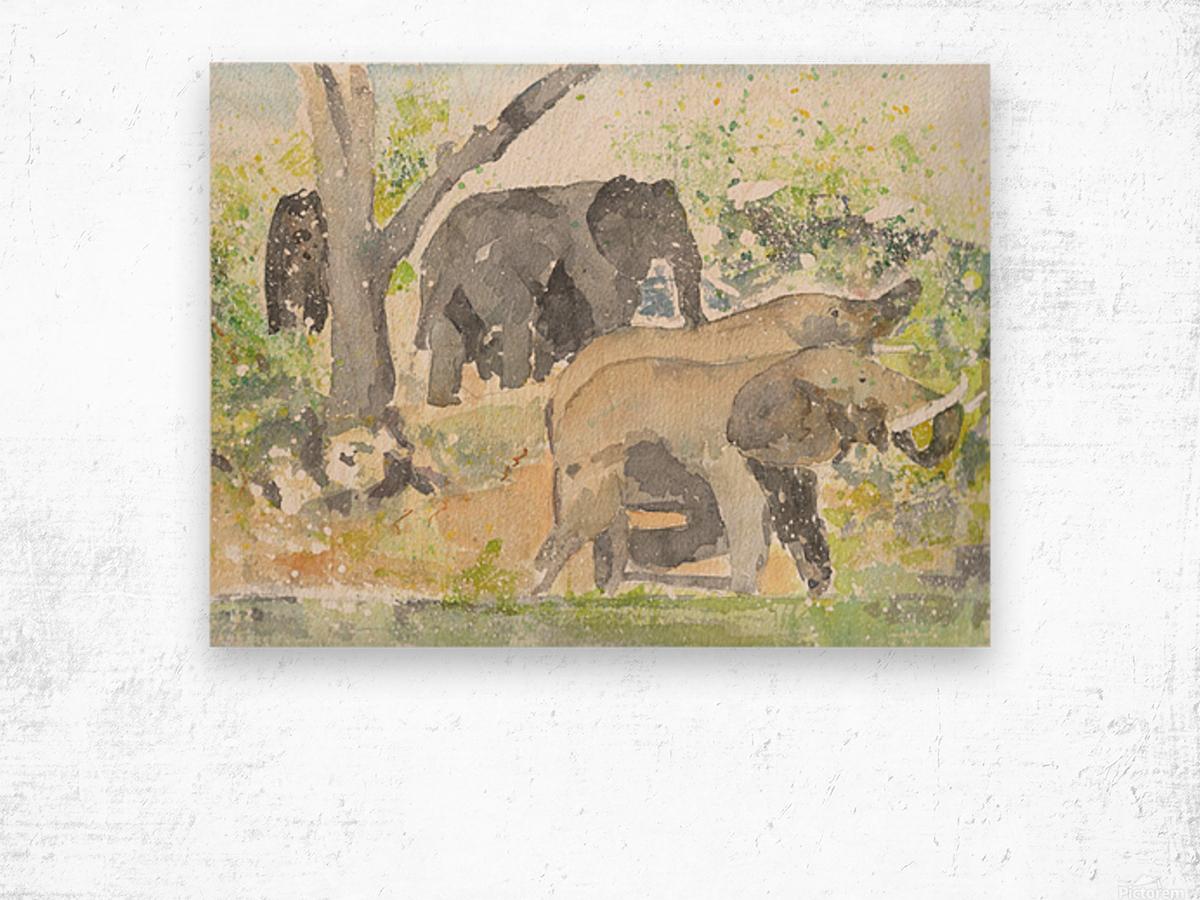 African Elephants 1 Wood print