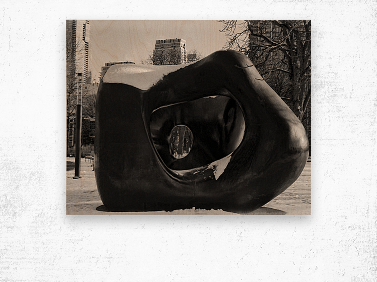 Two Large Forms at Grange Park 2 Wood print