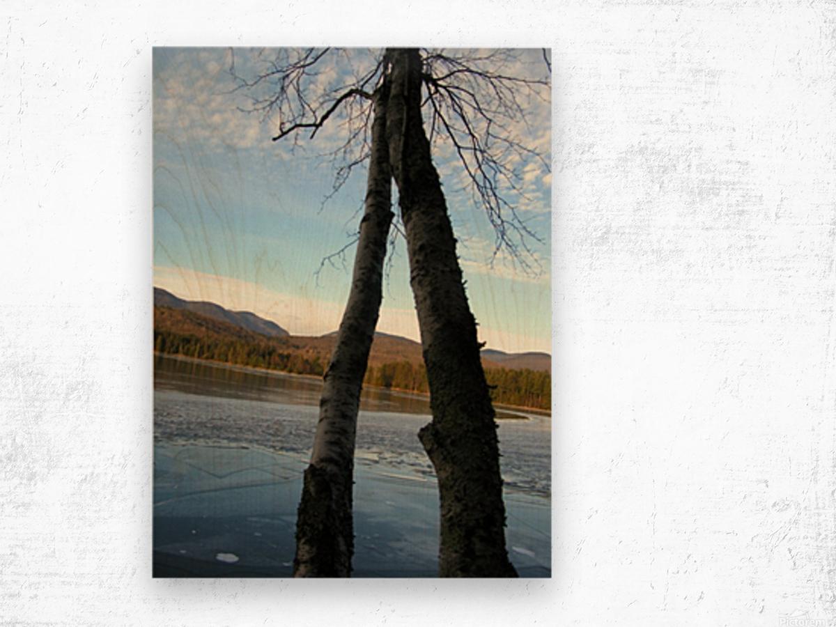 Love at the Lake Wood print