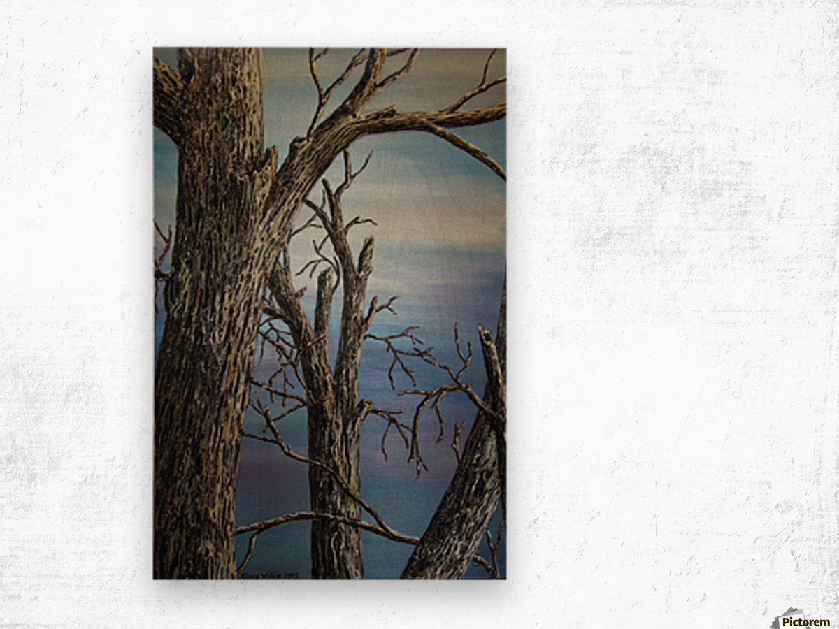 Blue Vista Wood print