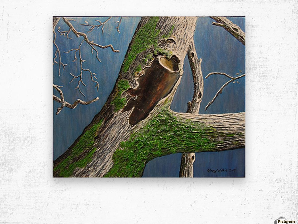 Mossy Branch Wood print