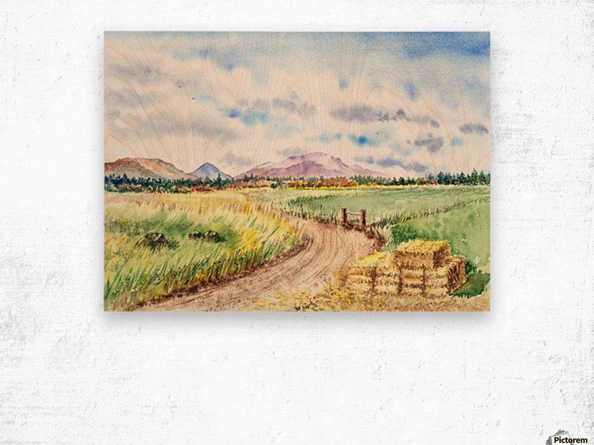 Farm Road The Mountains landsape Wood print