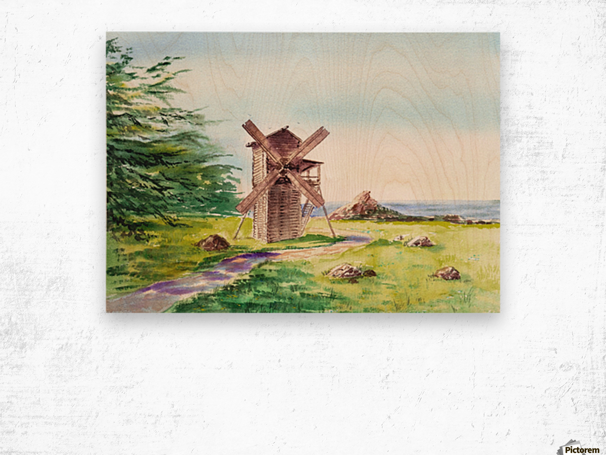 Landscapes Of California Fort Ross Windmill Wood print
