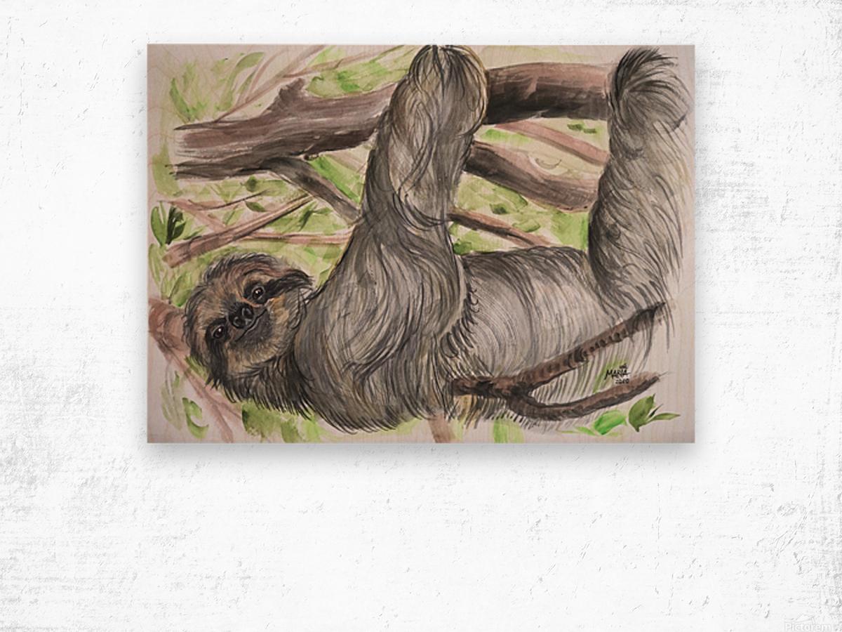 Collection COSTA RICA-Sloth Impression sur bois