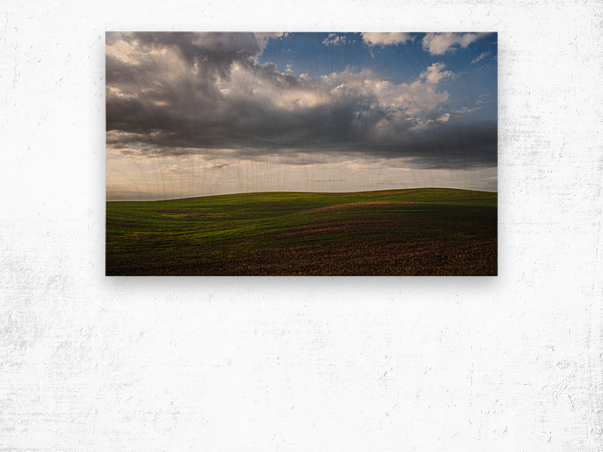 Fields and clouds Wood print