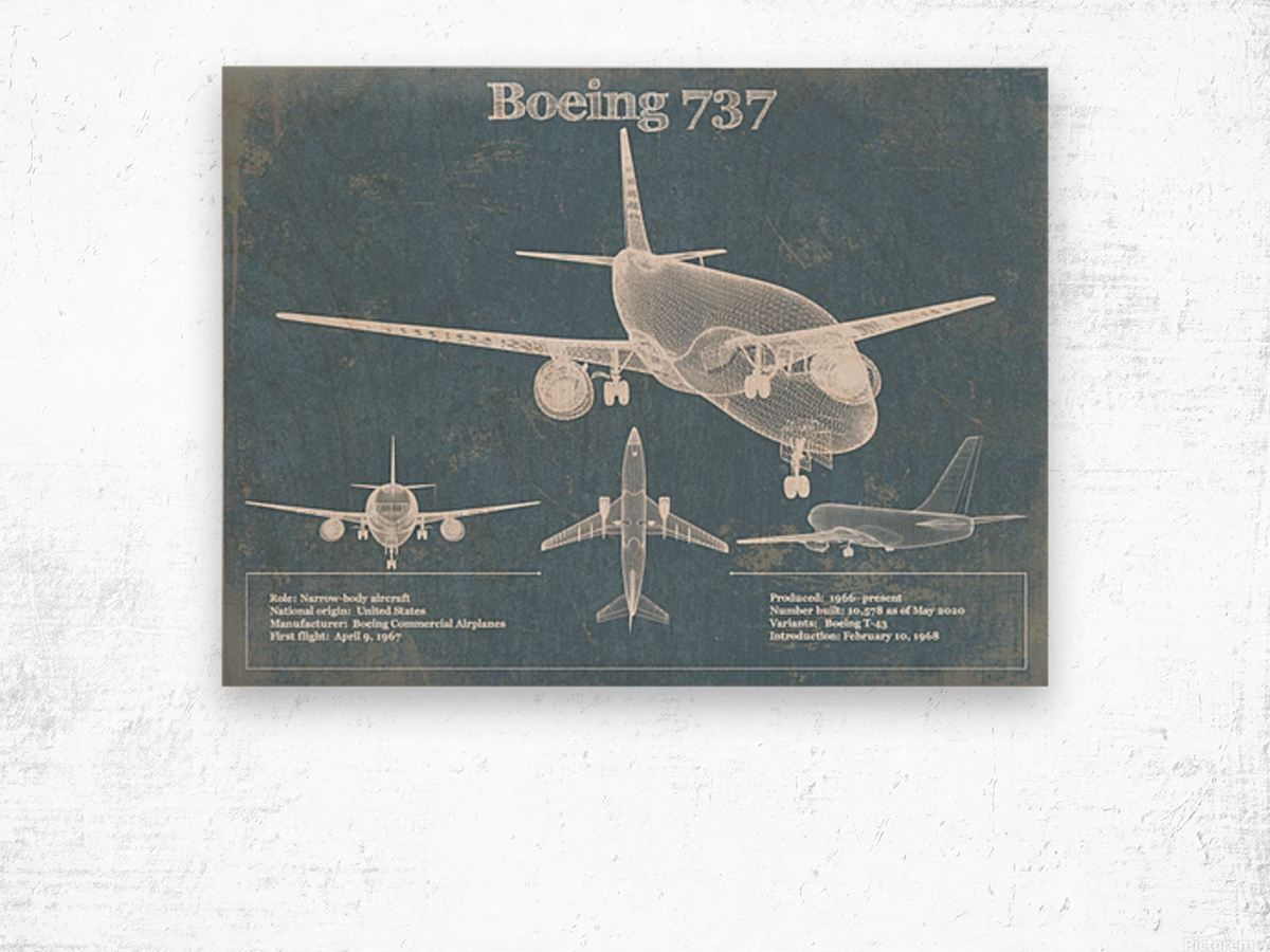 737 Wood print