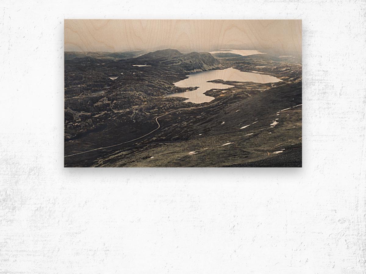 Lake stain Wood print