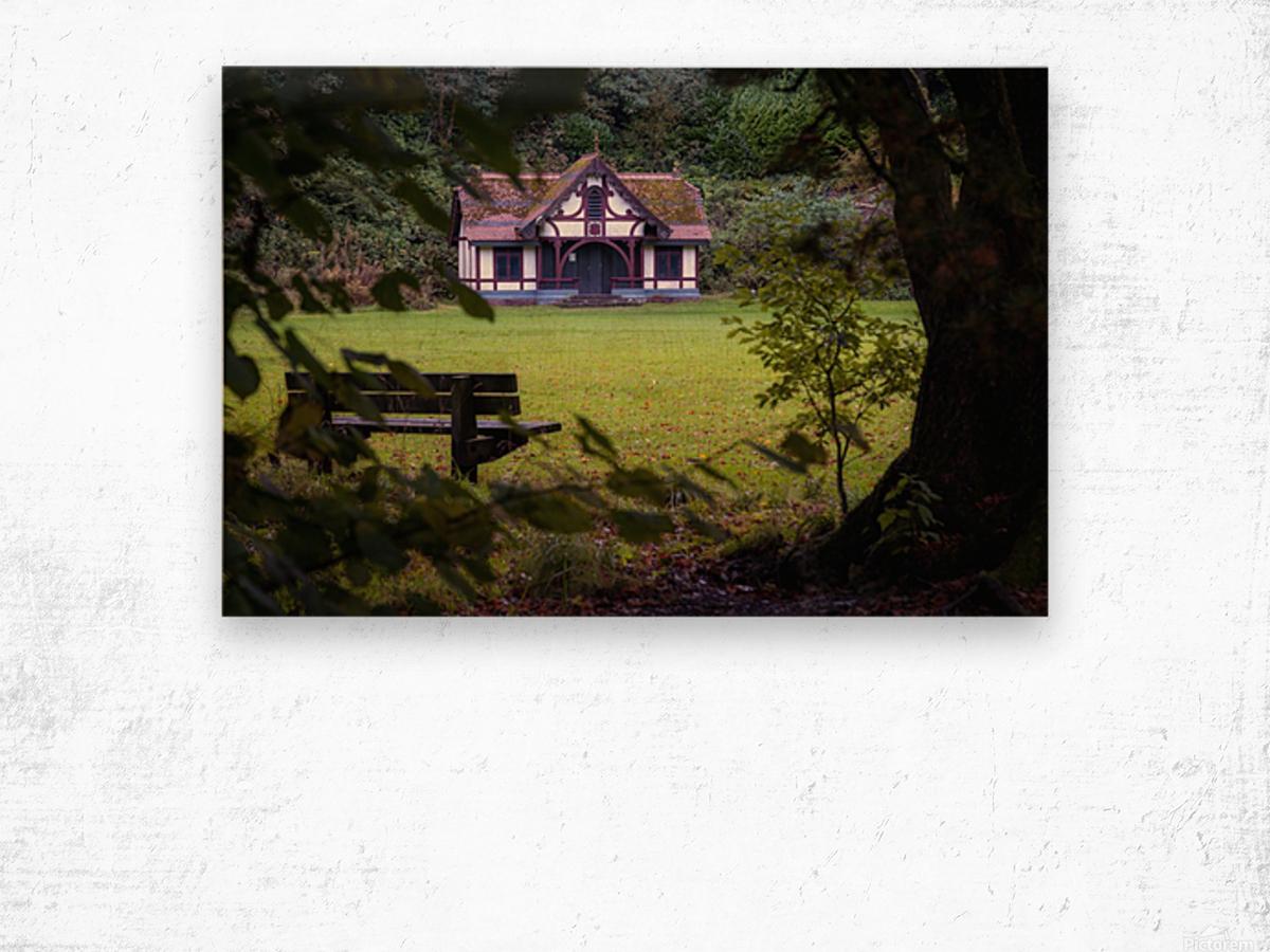 Craig-y-Nos Country park pavilion Wood print