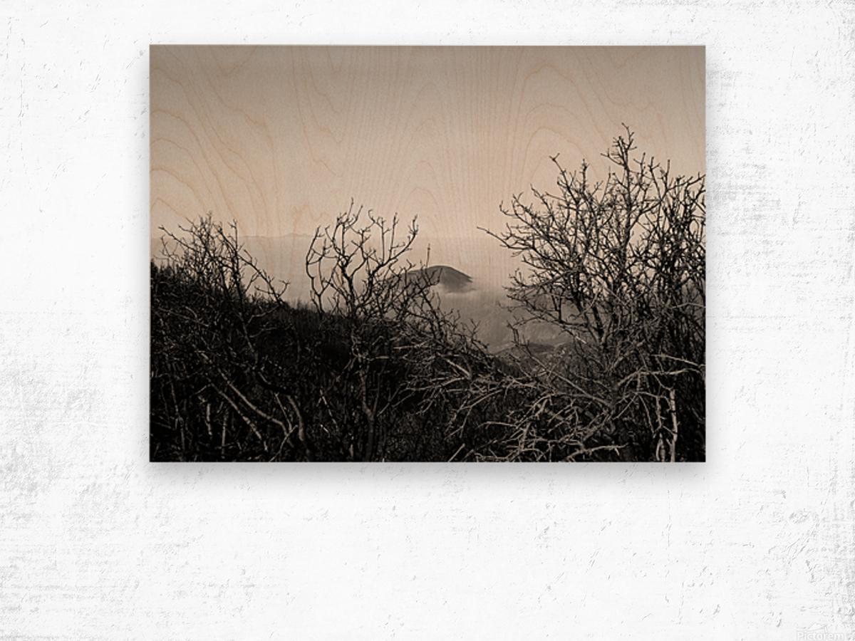 California Clouds through Mountain Brush in B&W Wood print