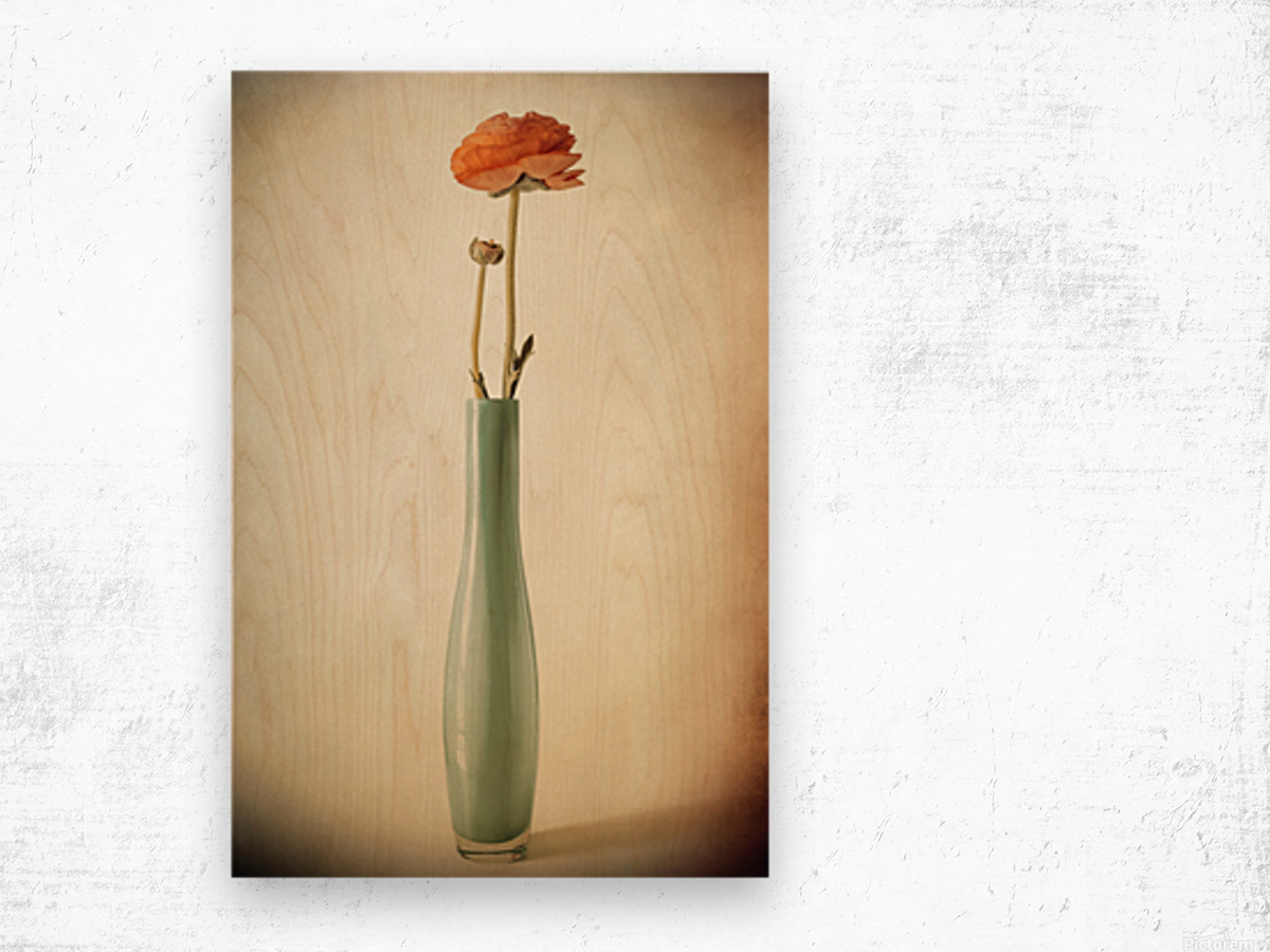 Vanishing Wood print