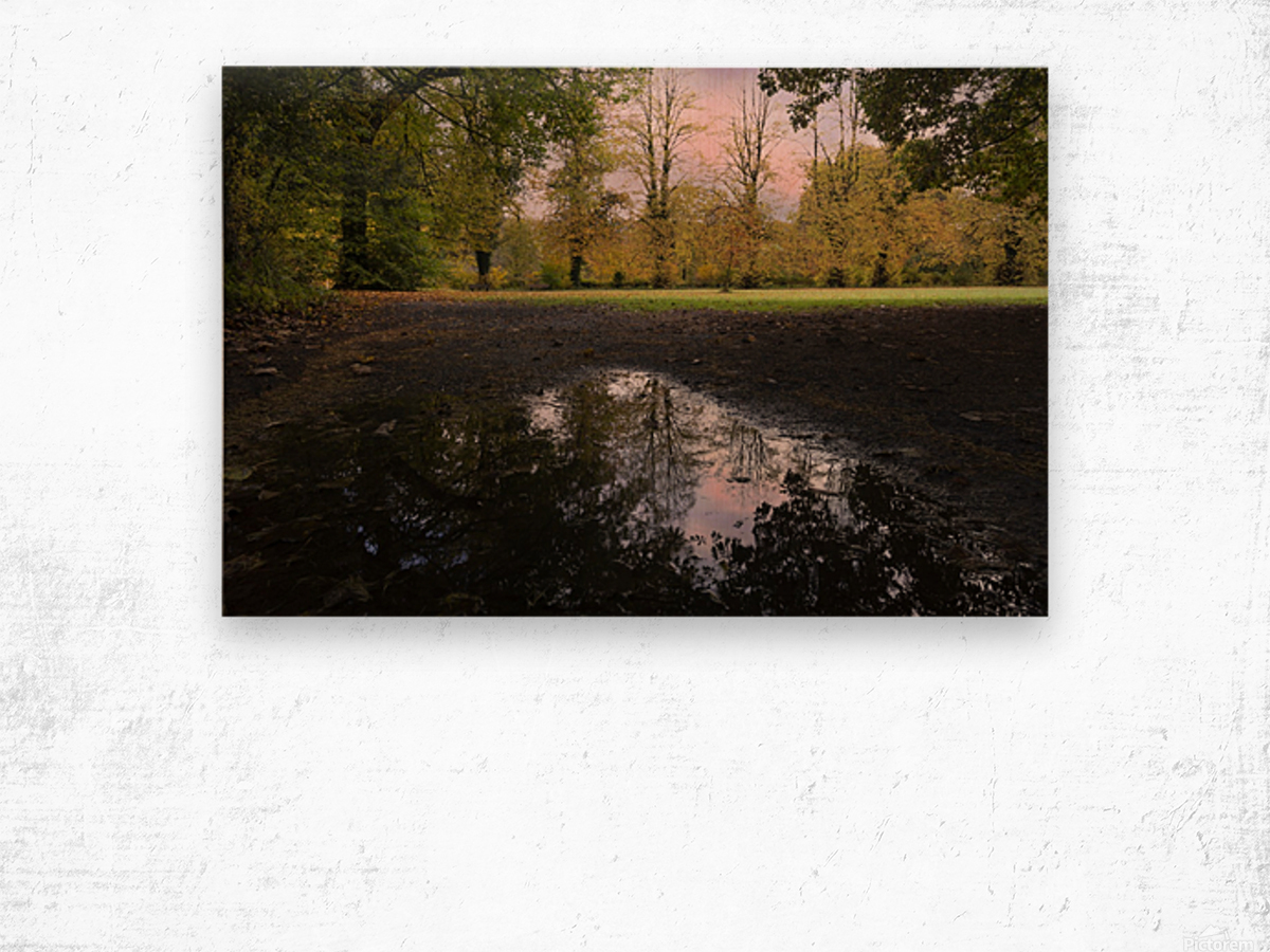 Autumn reflections in a field Wood print