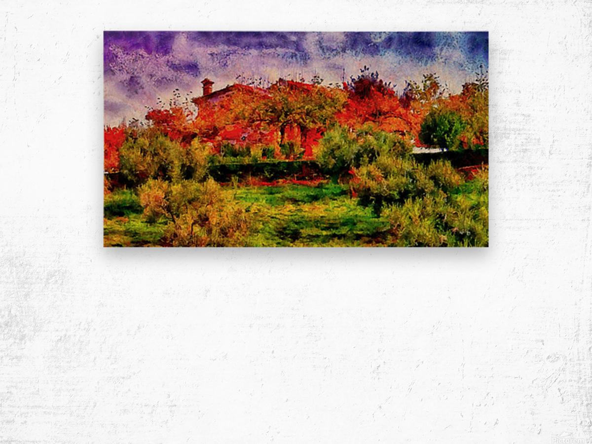 Sunset Autumn Color In Umbria Wood print