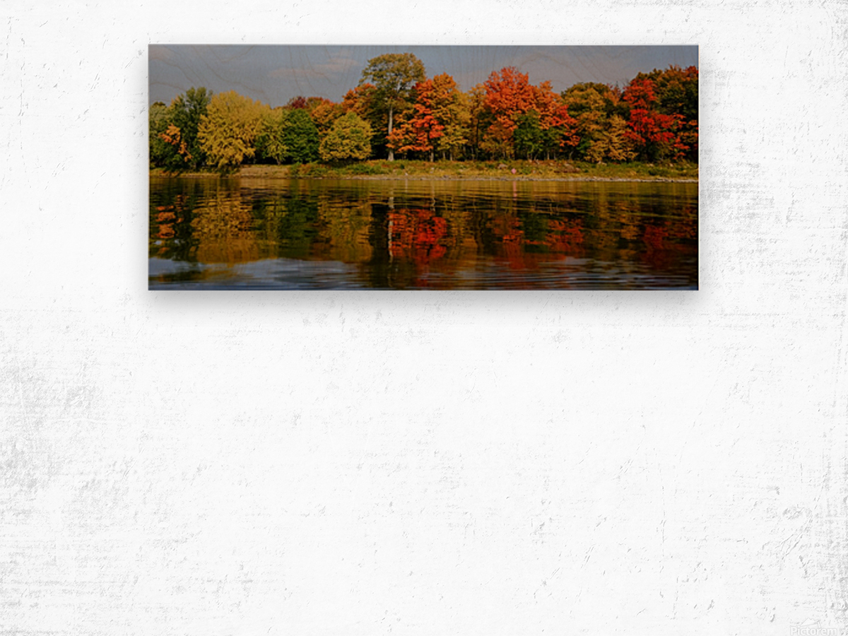 Fall in love with fall Impression sur bois