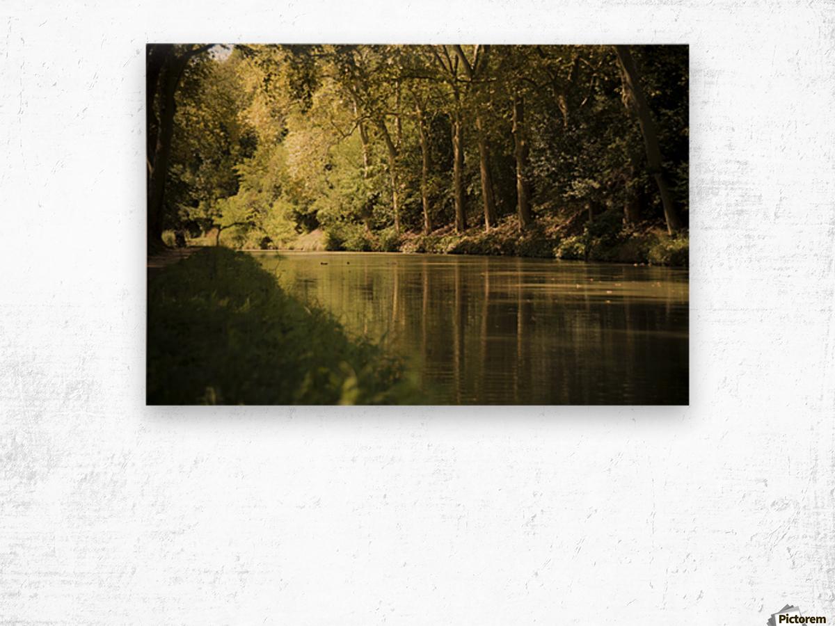 Canal  Carcassone Wood print