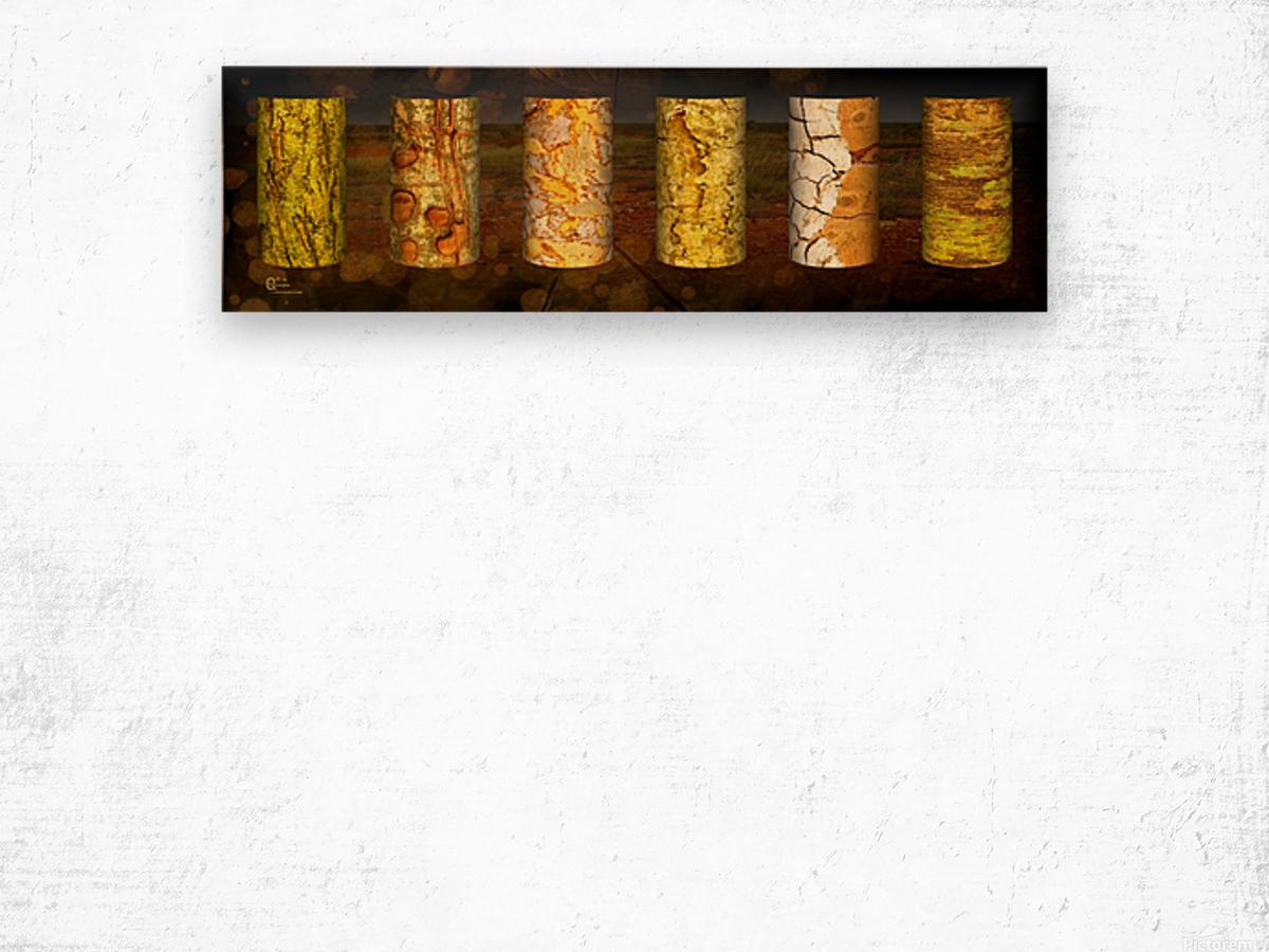 tree bark live Wood print