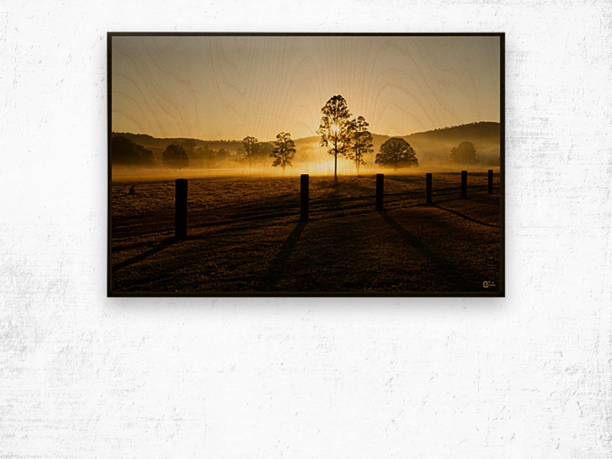 glenreagh sunrise Wood print