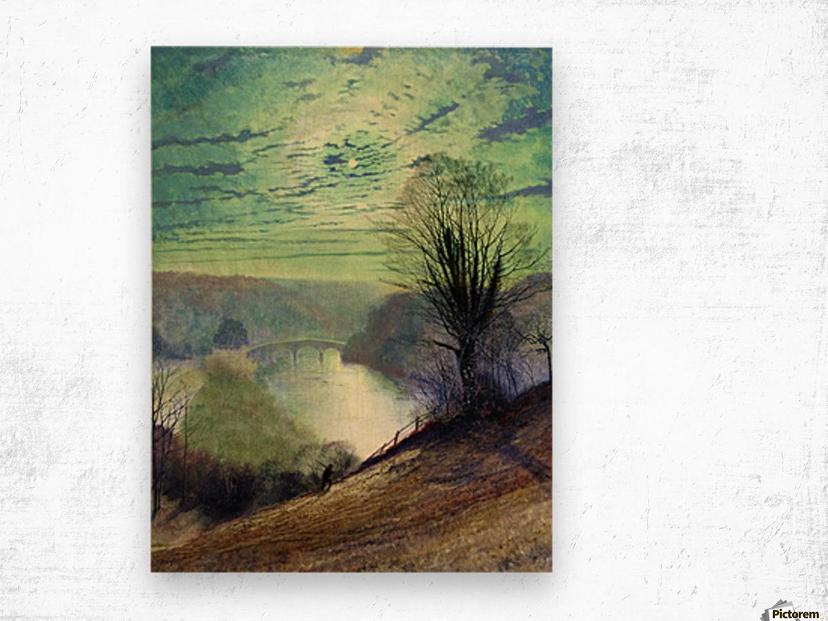 On the Tees near Barnard Castle Wood print