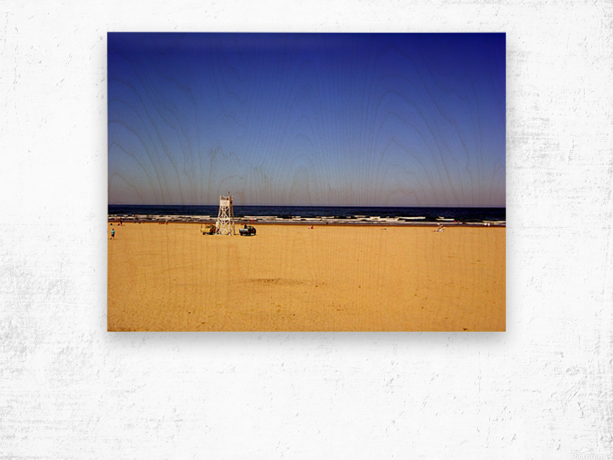 Oregon Coast   Golden Sands Wood print