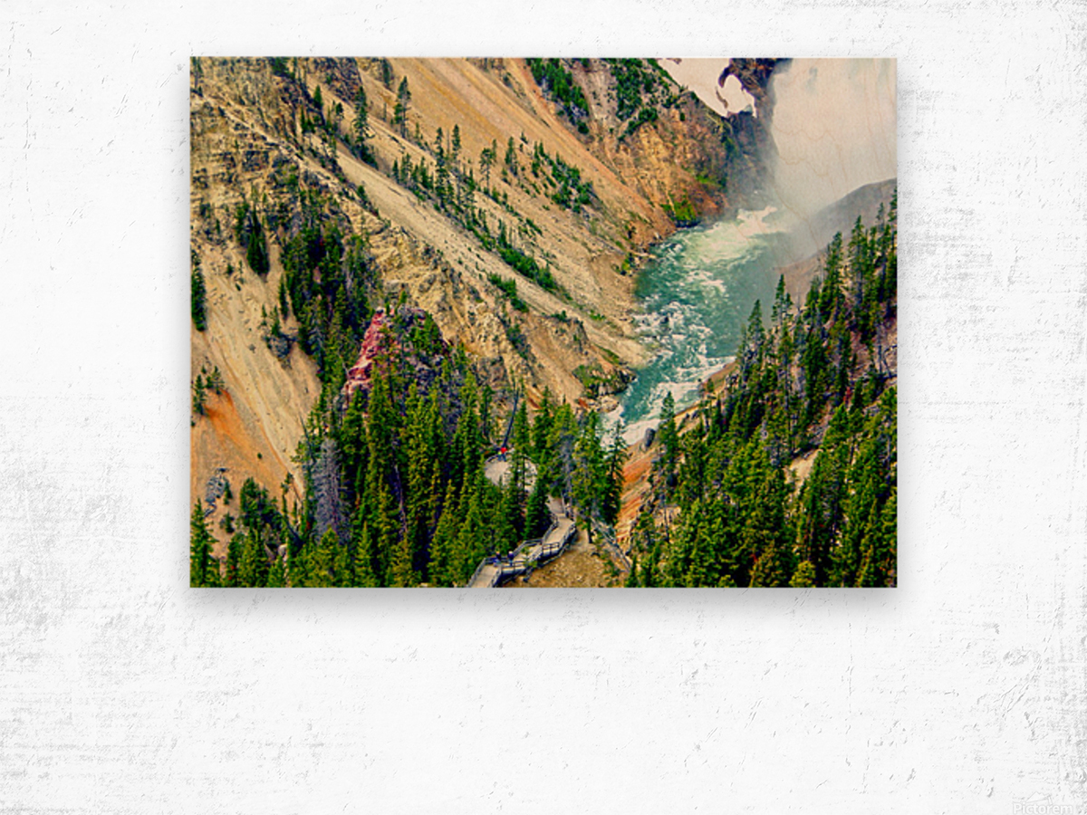 Mighty Yellowstone 3 - Grand Canyon of the Yellowstone River - Yellowstone National Park Wood print