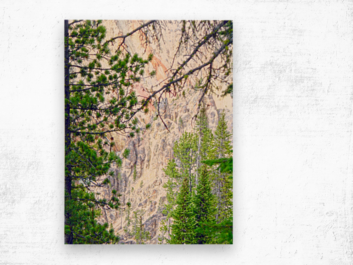 Mighty Yellowstone 4 - Grand Canyon of the Yellowstone River - Yellowstone National Park Wood print
