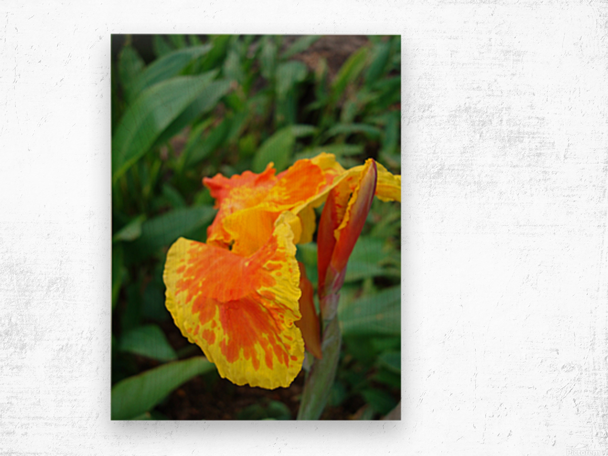 Floral Delight Wood print