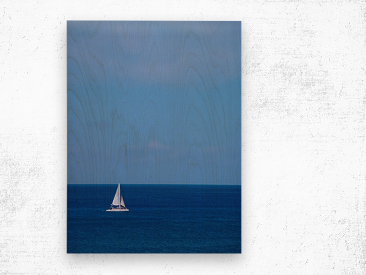 Blue Day - Gallery Artwork of the Year 2017 - Minimalism Wood print