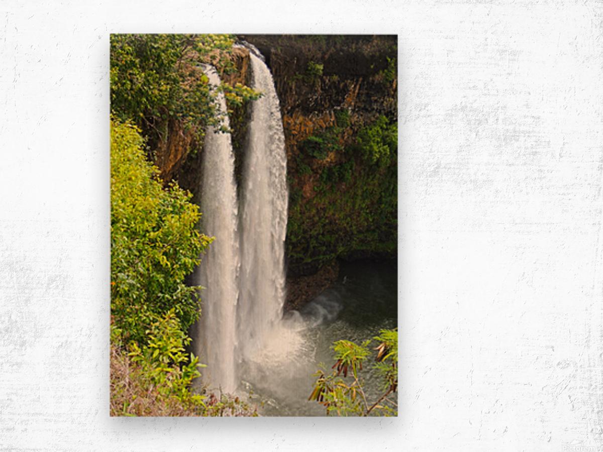 Wild Kauai - 2016 Gallery Artwork of the Year - Portrait-Natural Wood print
