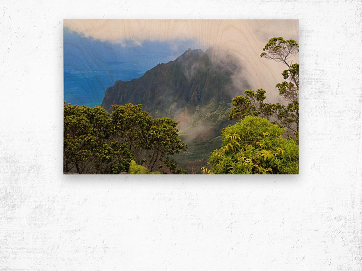 Wild Kauai 3 Wood print