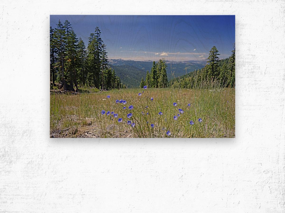 Sierra Nevada in Spring 7 of 8 Wood print