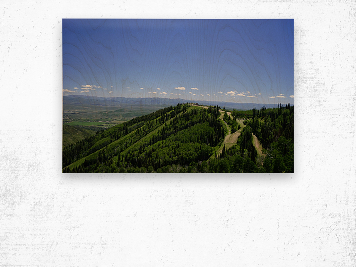 Hike Park City Wood print