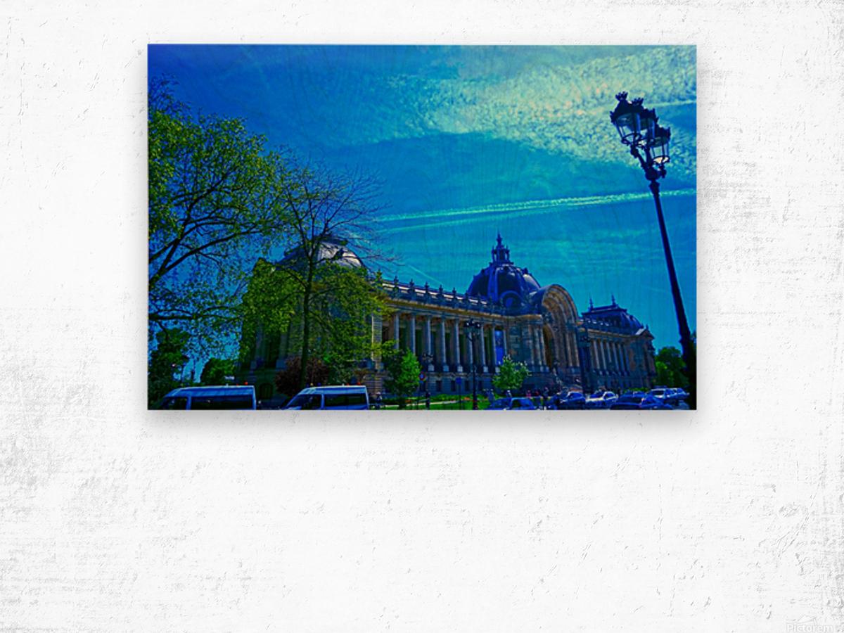 Petit Palais 8th Arrondissement Paris Wood print