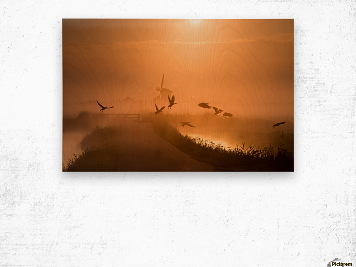 Sunrise Flight Wood print