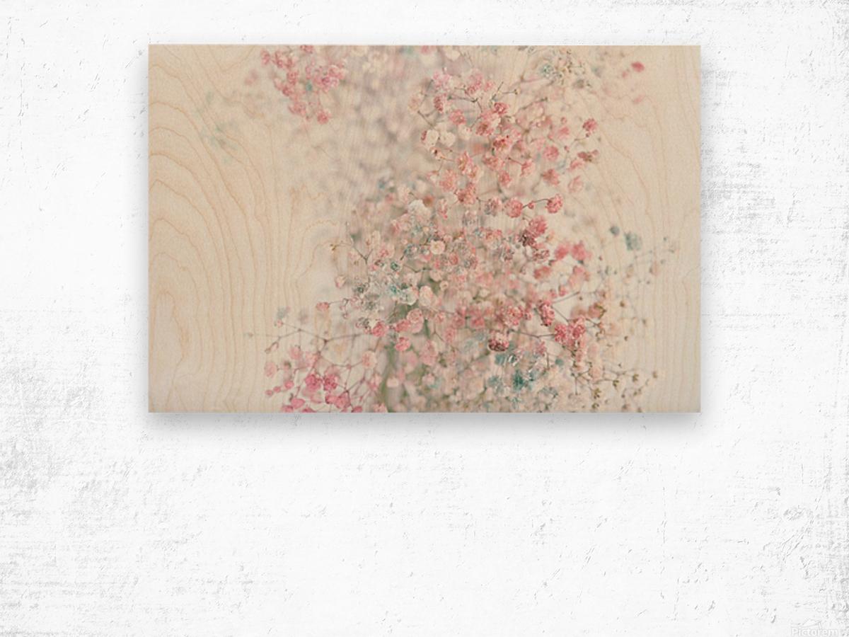 Daltana Pastel Floral Ceiala Wood print