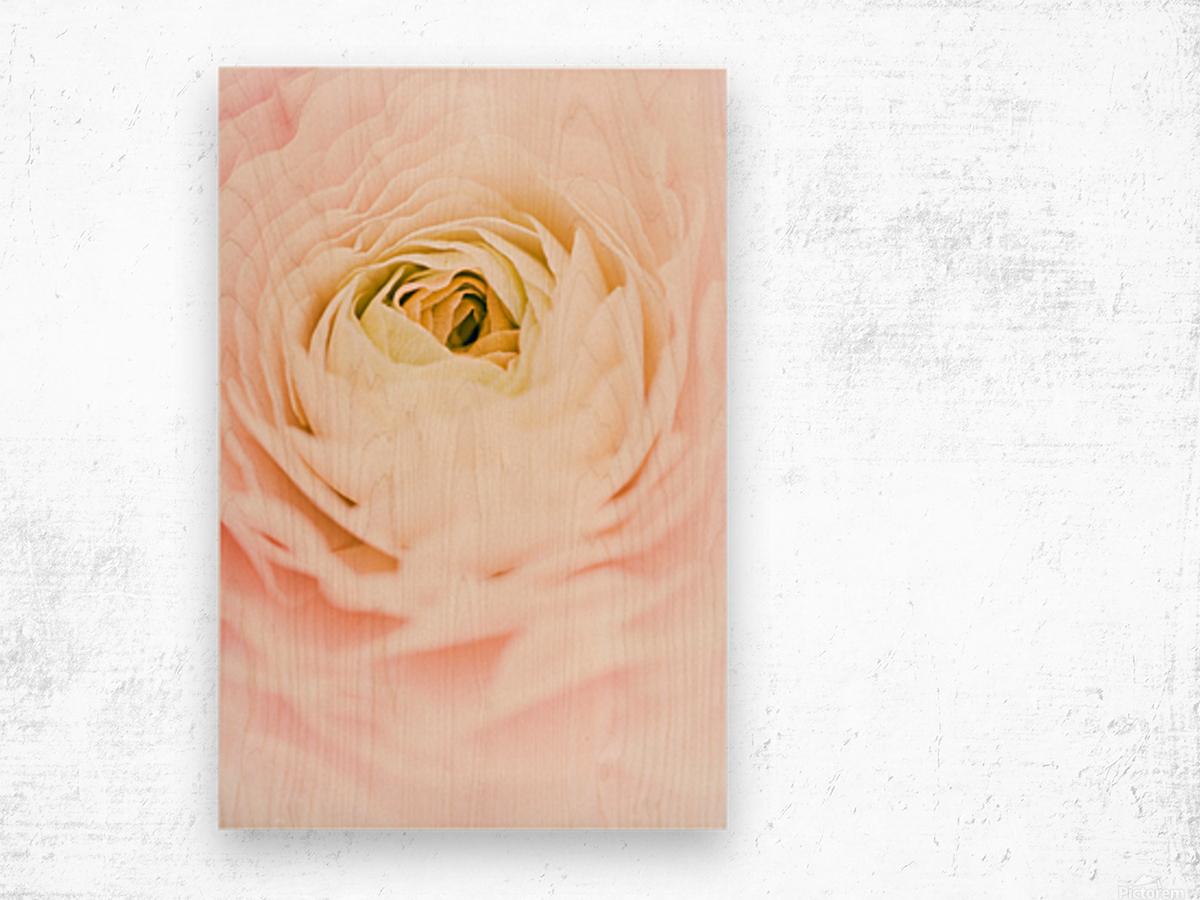 Daltana Spring Brill Wood print