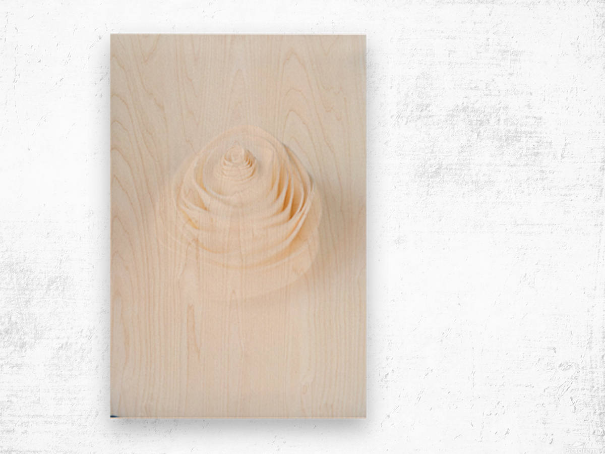 Daltana Spring Artill Wood print