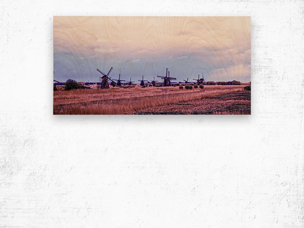 Wonderful Windmills Wood print