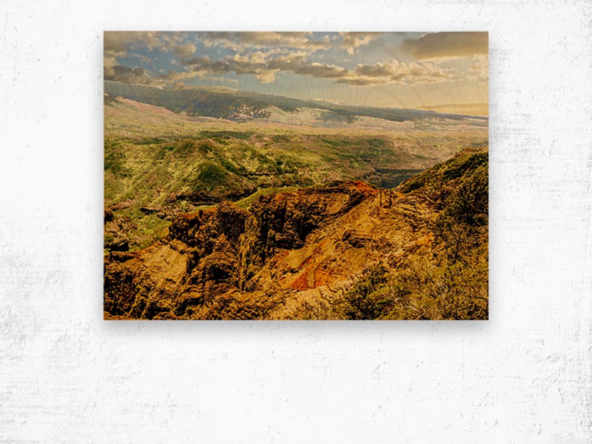 Untamed Kauai 3 of 5 Wood print
