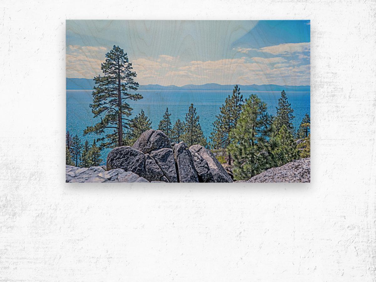 To the Horizon Wood print