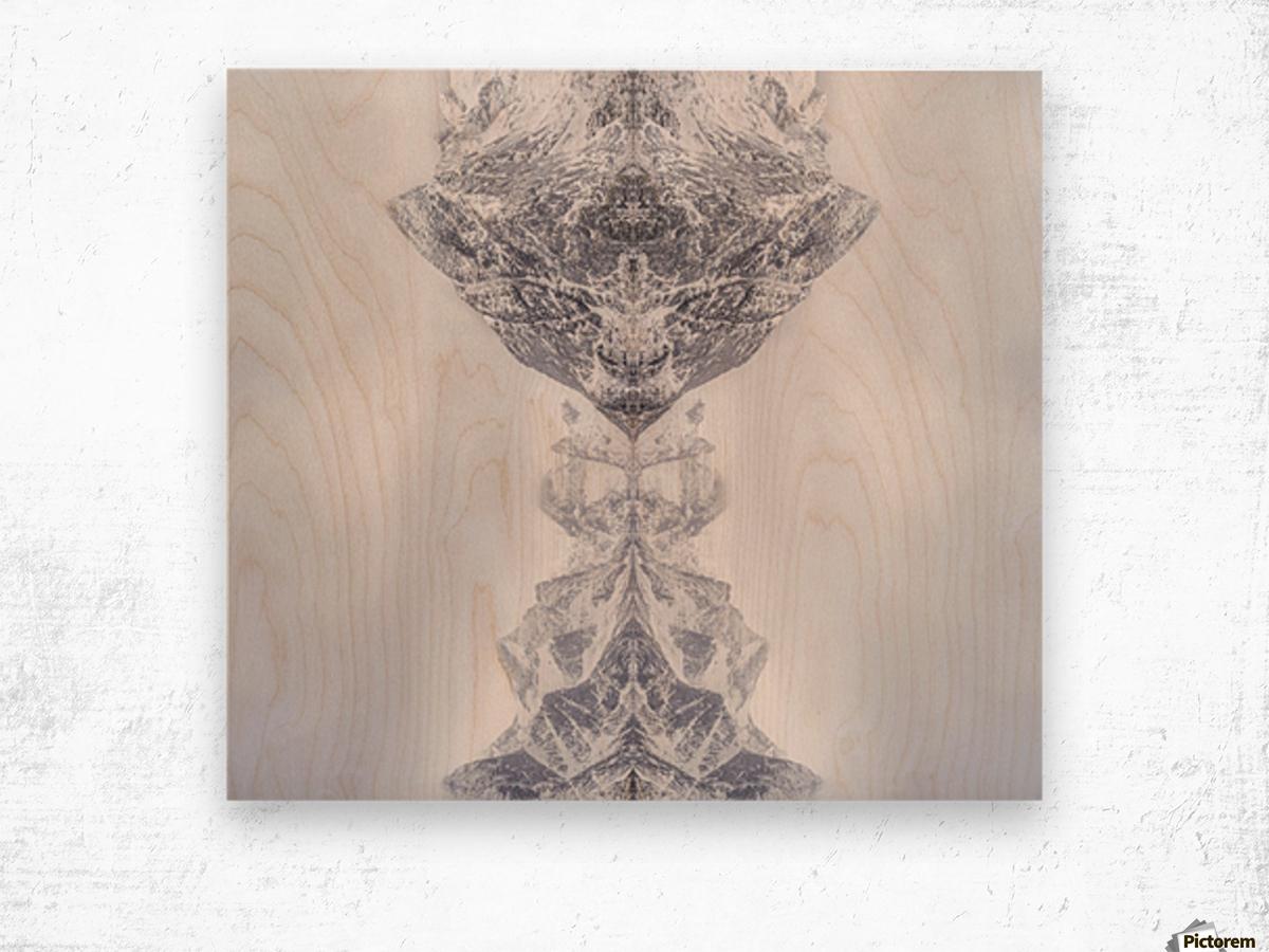 HIDDEN by Ignacio Palacios  Wood print