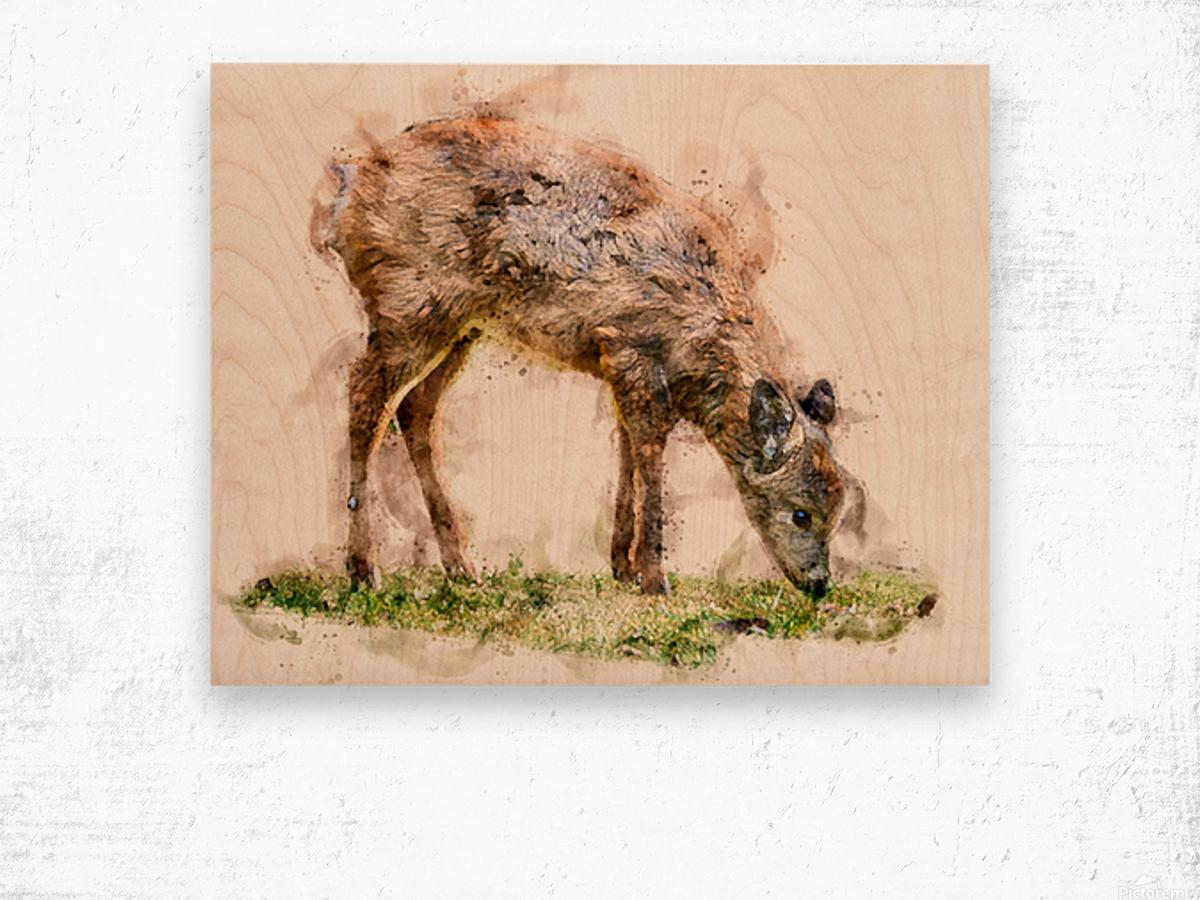 White Tail Deer Wood print
