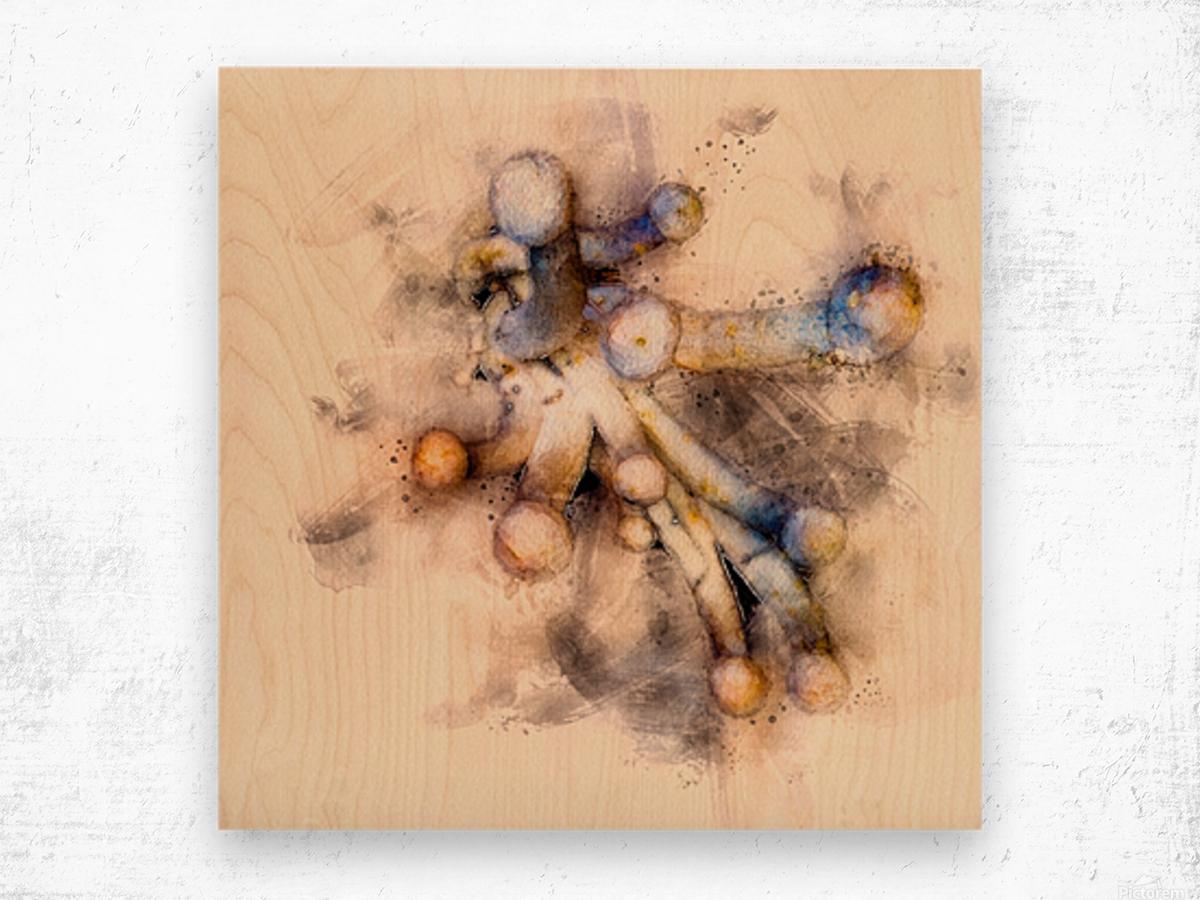 Tasty Mushroom Abstract Wood print